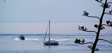 Νεφρολογικό Κέντρο Σαρωνικού - Θάλασσα - Αρχική